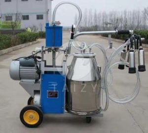 How to improve milk quality made by cow milking equipment?